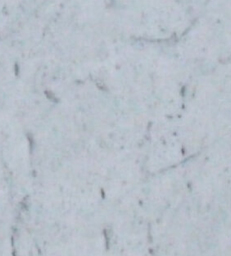 Marble White Carrara C Featured Images